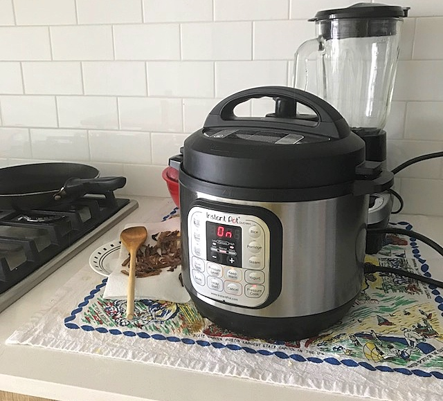 Easy Indian food recipes in Instant Pot Mini